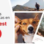 Pinterest lanza pines de historias y nuevas herramientas